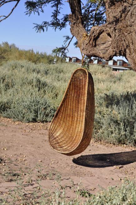 Balanços pendurados nas árvores