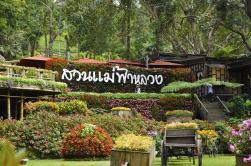 DoiTungDevelopmentProject_chiang_rai-hotelnews_traveller-8