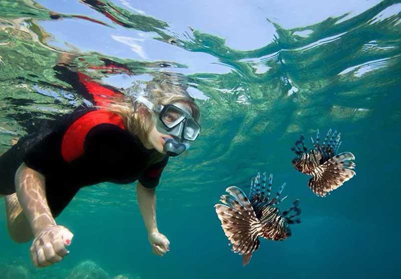 Snorkel na Ilha das Couves