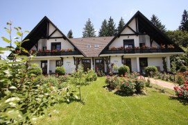 Accommodation in Villas - Poiana Brasov
