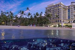 kmart kitchen cabinets naples fl 新奥塔尼凯马纳海滩酒店檀香山 hi 预览所有的照片