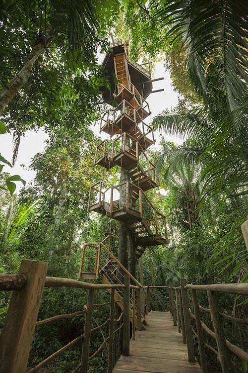 Treehouse Lodge  Bungalows dans les arbres en fort amazonienne  Hotelsinsolitescom