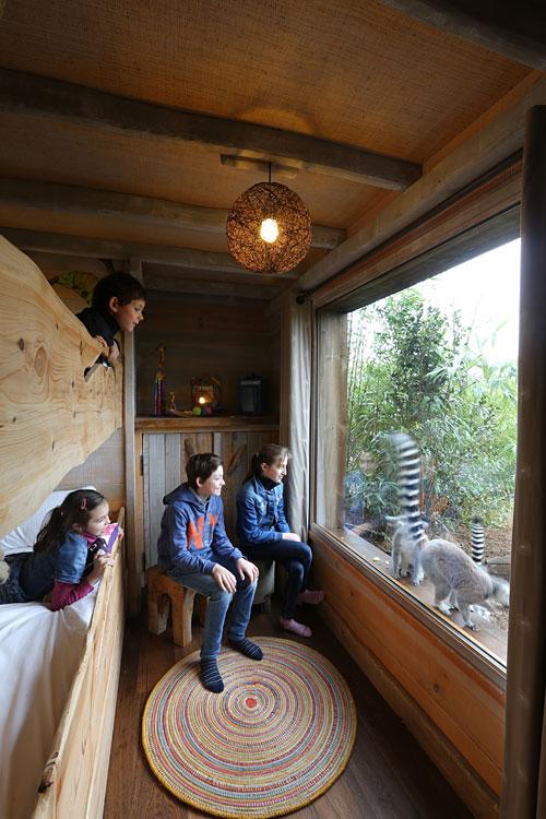 Safari lodges du Zoo de la Flche  Dormir au milieu des ours blancs des tigres et des loups
