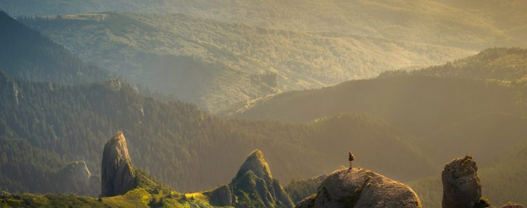 A giant valley of trees surrounded by epic mountains and a tiny speck of a person taking it all in.