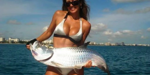 Hot girl in bikini tarpon fishing