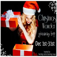 Christmas Wonder Giveaway Hop button.