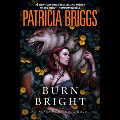 Burn Bright Audiobook by Patricia Briggs read by Holter Graham