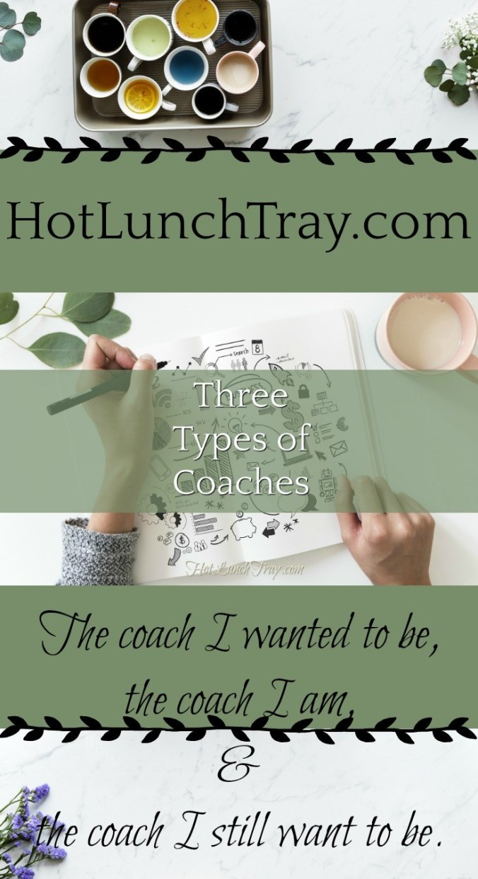 Three Types of Coaches PIN