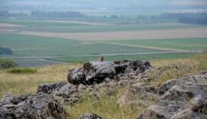 Makam Usia 4.000 Tahun Ditemukan Di Israel