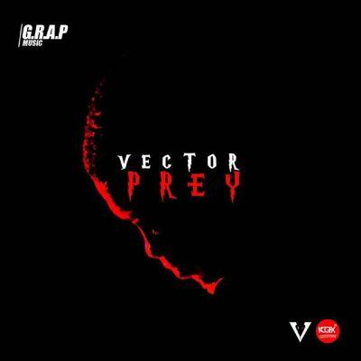 Vector – Prey
