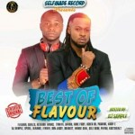Best of Flavour Mix 2017