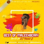 Best of Maleek Berry Mix 2017