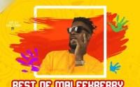 Best of Maleek Berry Mix 2017