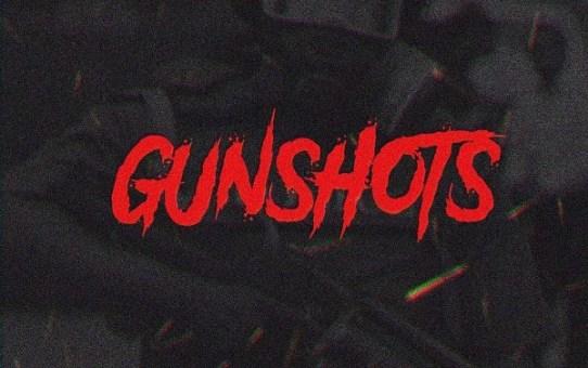 Download Gunshots by Vector
