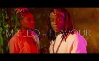 VIDEO: Mr Leo ft Flavour - Jamais Jamais (Remix)