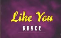 Rayce - Like You