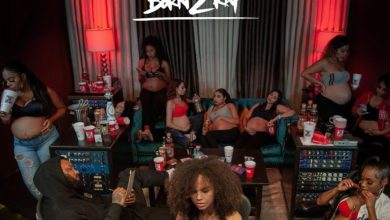 Photo of The Game – Born 2 Rap Album