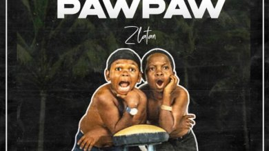 Photo of Zlatan Debuts New single Unripe PawPaw