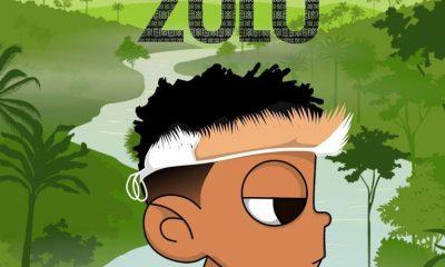 Stream Nasty C & DJ Whoo Kid 'ZULU' Mixtape