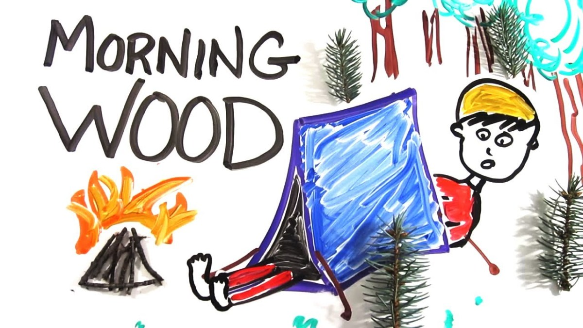 The Science of 'Morning Wood' | HotStream org