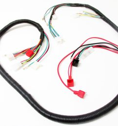 scooter electrical wire harness 150cc 125cc [ 4608 x 3456 Pixel ]