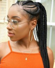 braids hairstyles ultimate