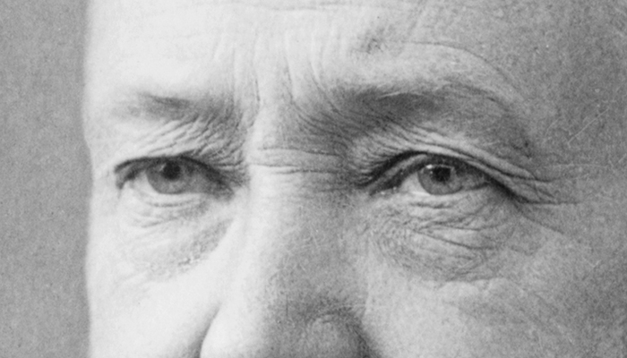 Benjamin Harrison's eybrows