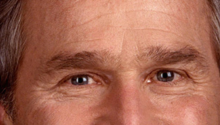 George W. Bush's eyebrows