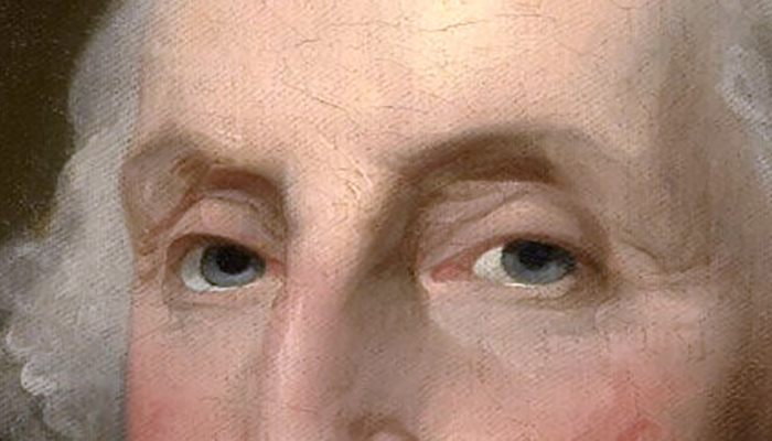George Washington's eyebrows