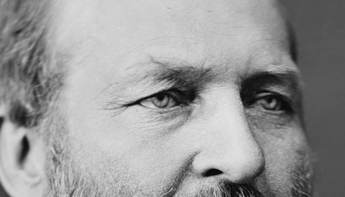 James Garfield's eyebrows