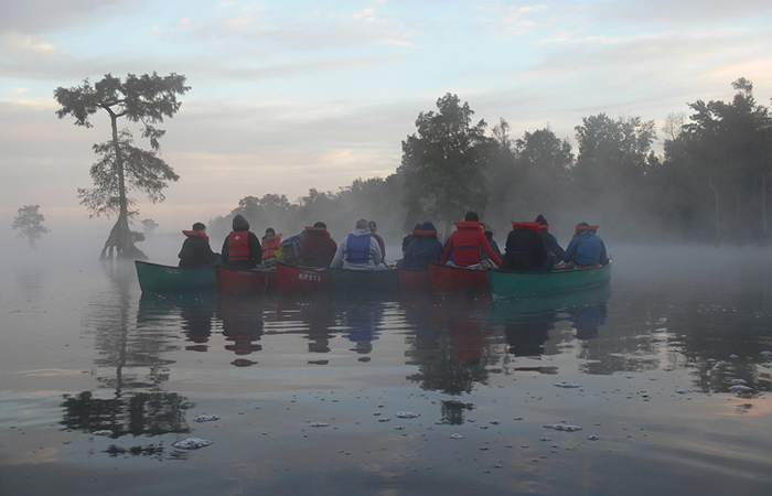 Canoes in the Great Dismal Swamp