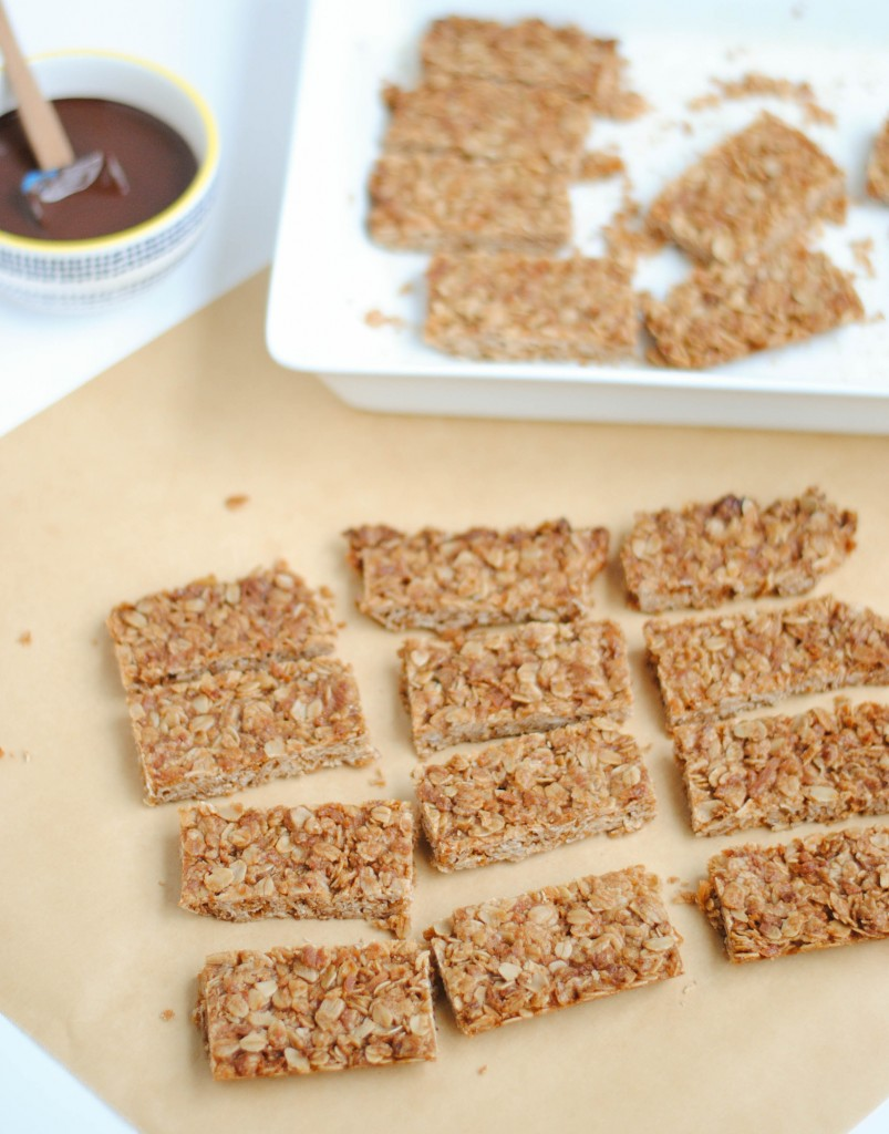 Crunchy Coconut and Oat Bars | Hottie Biscotti