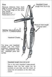 Sizing brow headstalls