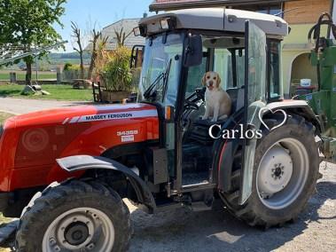 Carlos und sein Traktor *g*