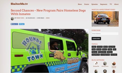 Doggy Daycare Franchise Initiates New Program to Help Dogs in Need