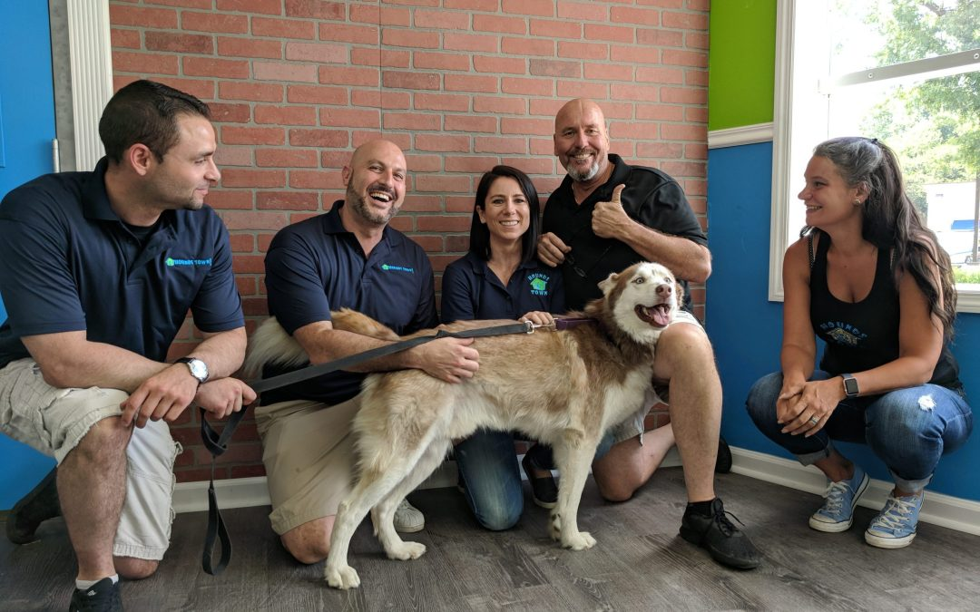 Booming Pet Care Franchise Doubles System Size in 2018