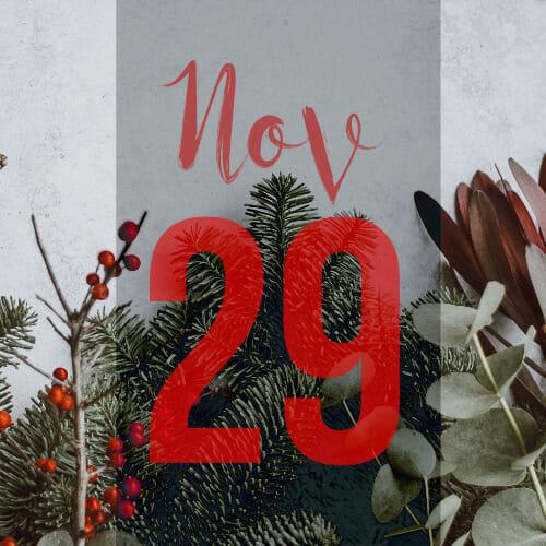 door-29th November