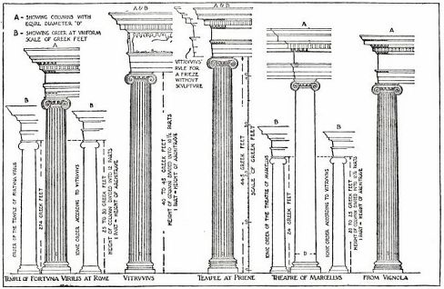 Proportions and the Classical Orders