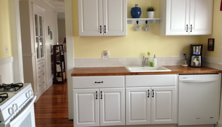 kitchen cabinet ikea pantry organization ideas diy cabinets vs home depot house and hammer