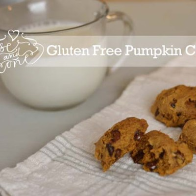Gluten Free Pumpkin Chocolate Cookies