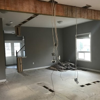 Reno Diaries: The Load Bearing Wall is Gone!