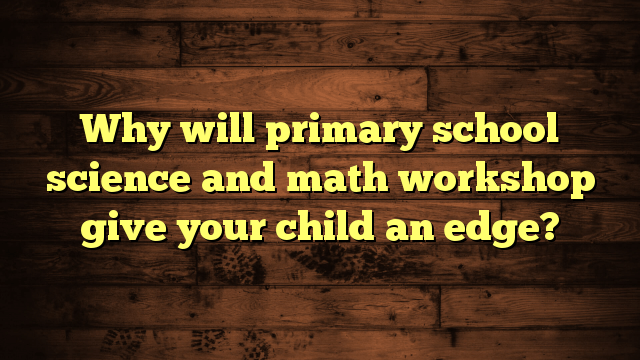 Why will primary school science and math workshop give your child an edge?