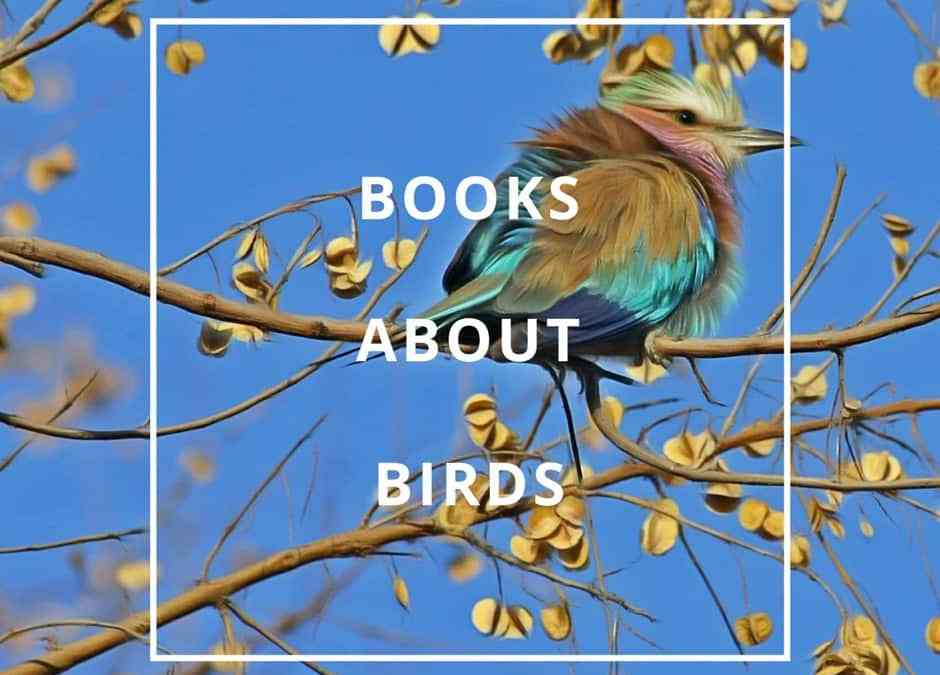 King of the Birds Review and Other Books About Birds