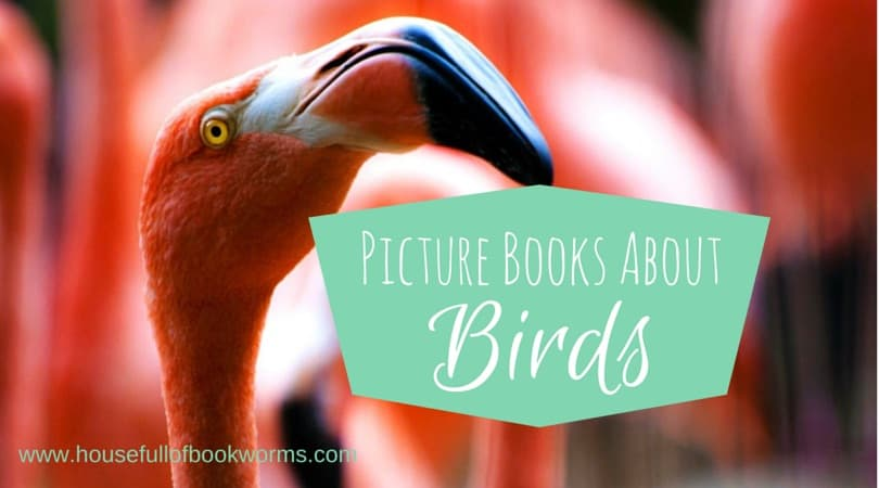 Picture Books About Birds