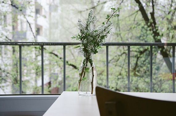 primavera in casa 3