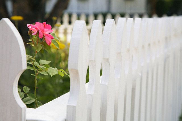 steccato bianco