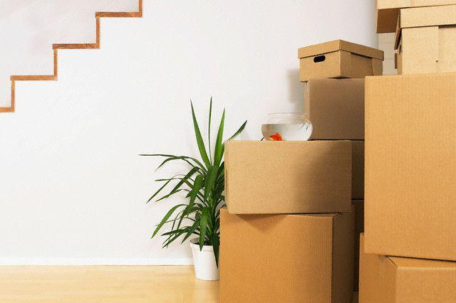 scatoloni casa nuova