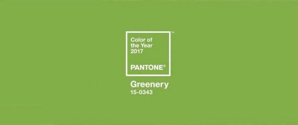 Pantone colour trend of the year 2017 greenery for Pantone 2017 greenery