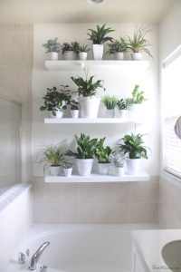 Plant wall in the bathroom | House Mix