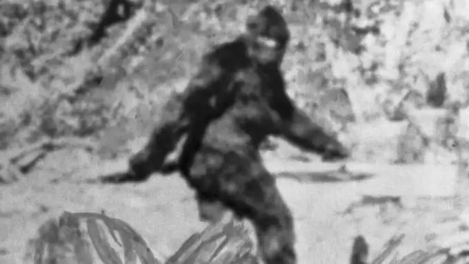 hunnting cryptids - black and white image of bigfoot.